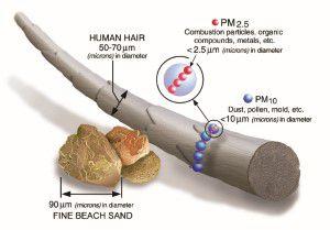 PM 2.5 and PM 10 size comparison